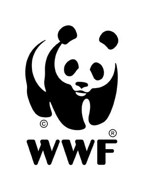 Wwf graphics