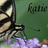 Butterflies icon graphics