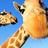 Giraffe icon graphics