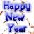 New year icon graphics