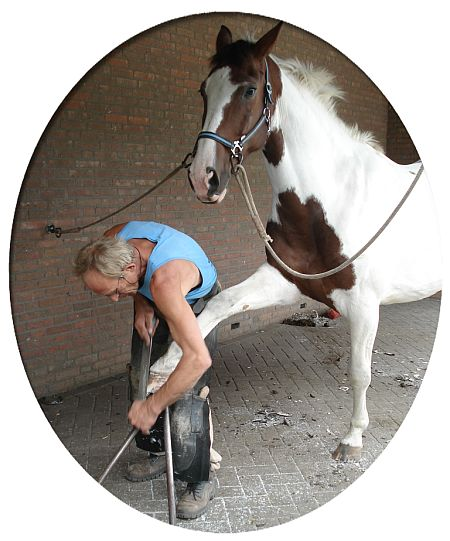 Farrier job graphics