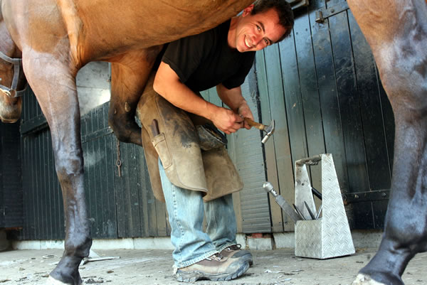 Farrier Job Graphics Picgifs Com