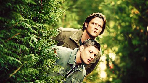 Supernatural movies and series