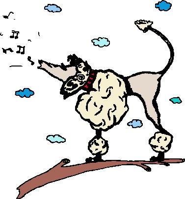 Animals music music graphics