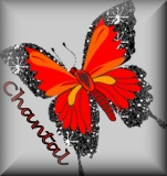 Chantal name graphics