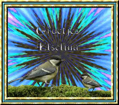 Elselina name graphics
