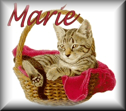 Marie name graphics
