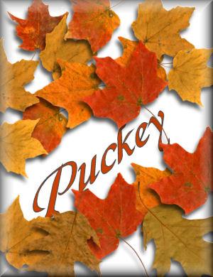 Puckey name graphics