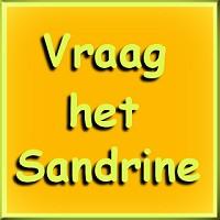 Sandrine name graphics
