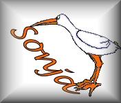 Sonja name graphics