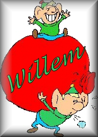 Name graphics Willem