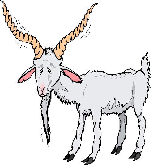 clip art goat pictures - photo #45