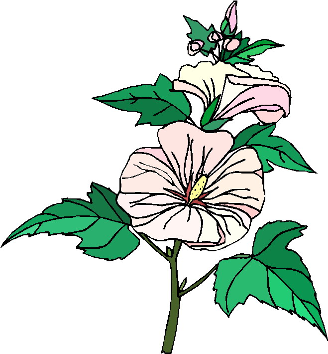 clipart of plants - photo #28