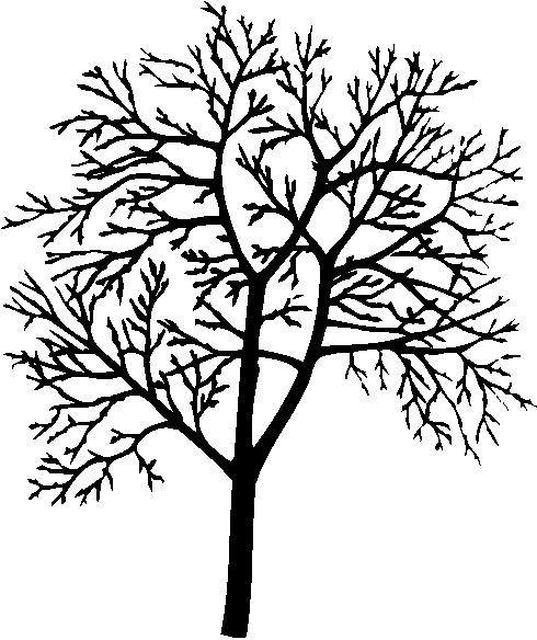 flowering tree clipart - photo #41