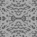 Grey wallpapers