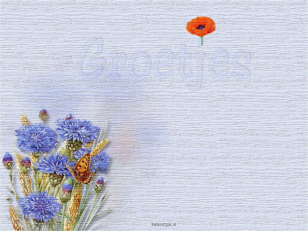 Achtergrondblauwekorenbloemen wallpaper for Homemade wallpaper