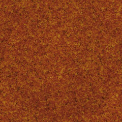 Orange Wallpapers