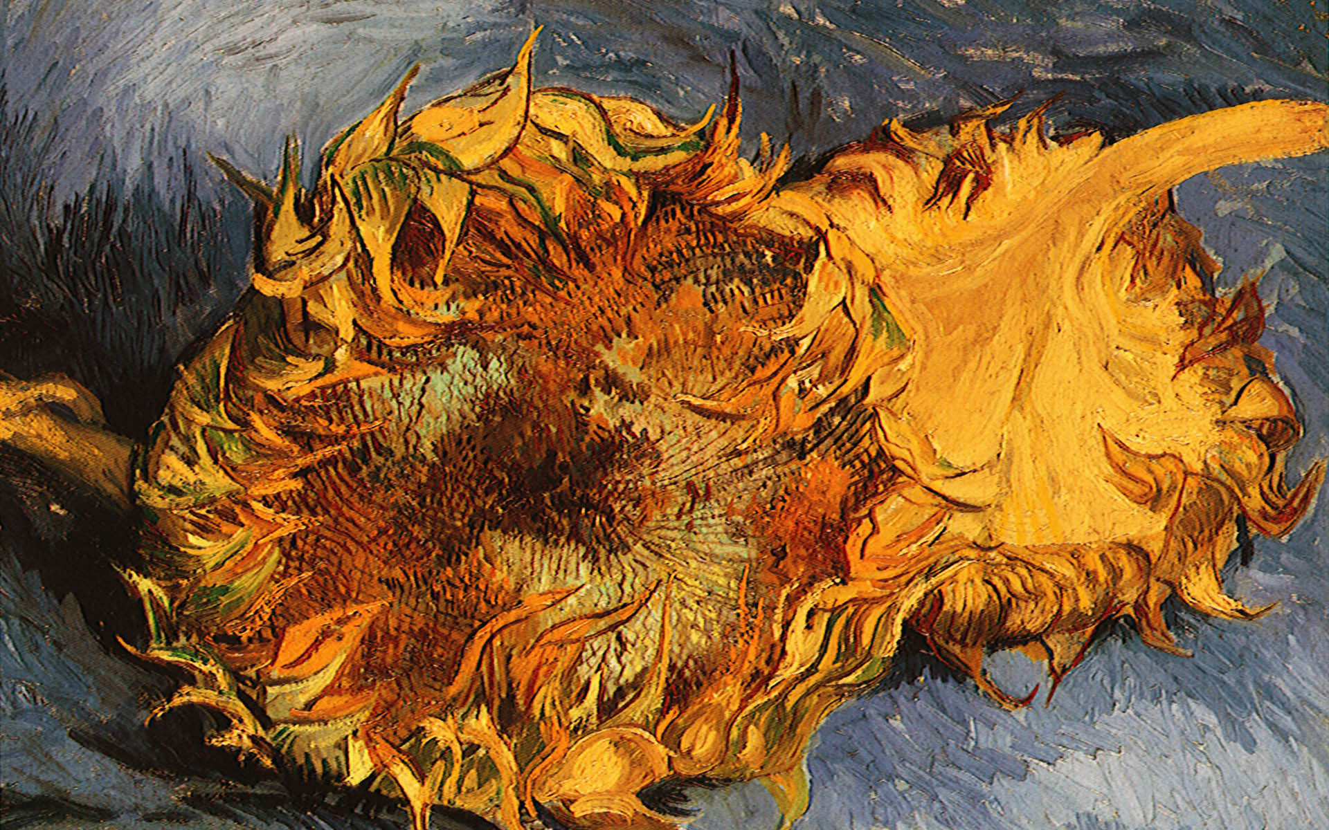 Van gogh Wallpapers and Backgrounds
